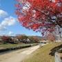 下鴨上川原町・未改修の京町家に紅葉情報を追加しました。