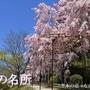 下鴨上川原町・未改修の京町家が価格変更となりました。
